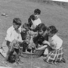 the chestnuts 1956
