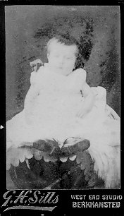 Carte-de-visite of an unknown baby taken by GH Sills of Berkhamsted. | The Dacorum Heritage Trust