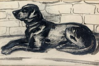 Ink drawing showing a Labrador waiting for its owner by local artist, Constance Lane, 1924. | Dacorum Herutage Trust
