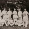 Boxmoor cricketeers rack up score of 154, not out