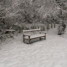 Chilly seat on Boxmoor 2009   Ian Phipps