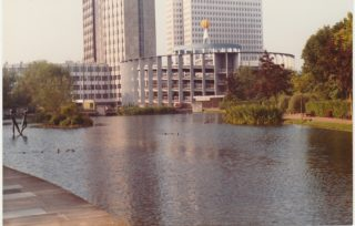 The lake | Ray Swan