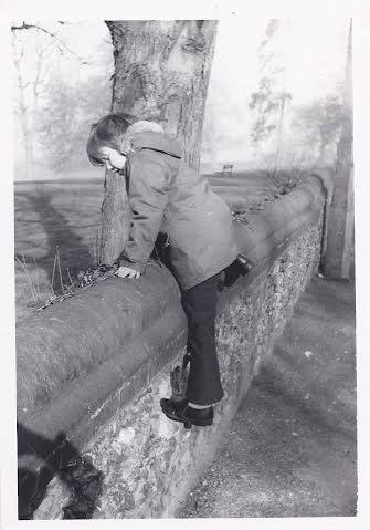 Little Matt climbs the wall of Gadebridge Park | Mrs Hatton