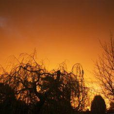 View from my home in Felden | Ian Phipps