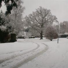 Snow covering a road in Felden garden 2009 | Ian Phipps