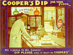 Advertisement for Cooper's dip | Berkhamsted Local History and Museum Society cared for by The Dacorum Heritage Trust Ltd