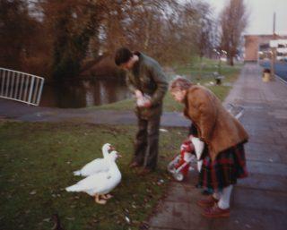 Muscovy Ducks in the water gardens, 1980 | David Warriner