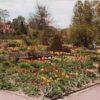 Jellicoe Water Gardens in the past